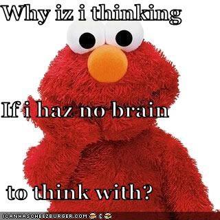 why-iz-i-thinking-if-i-haz-no-brain-to-think-with