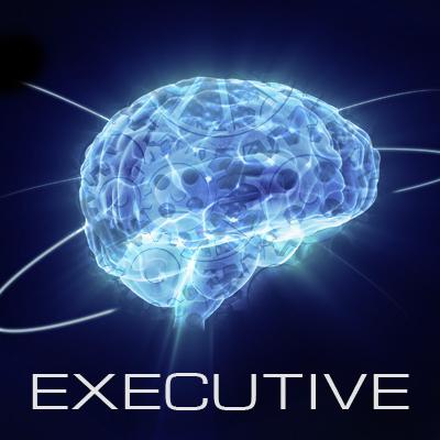 executive%20cover